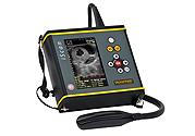 handheld, imaging diagnosis, ultrasound examination, bovine examination, horse examination