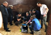 Workshops on ultrasound diagnostics – Horses – Prof. Jean Marie Denoix