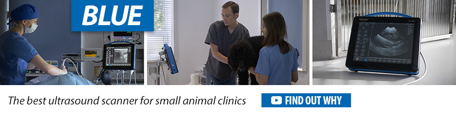 Dramiński BLUE the best ultrasound scanner for small animal clinics