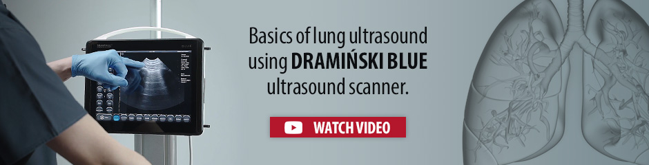 Basics of lung ultrasound in covid-19 diagnosing using DRAMIŃSKI BLUE portable ultrasound scanner